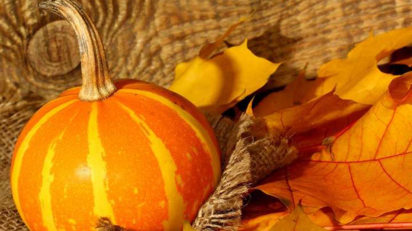 November: Missions & Fall Revival